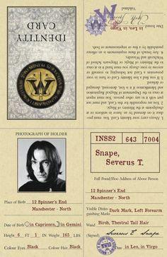 Harry Potter Journal, Harry Potter Quilt, Harry Potter Severus Snape, Severus Rogue, Harry Potter Magic, Harry Potter Decor, Harry Potter Tumblr, Harry Potter Facts, Harry Potter World