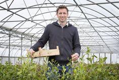 Een theeplantage in Nederland, het kan! Het kostte Johan Janse acht jaar, maar het is hem gelukt.