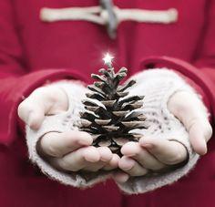 christmas tree pine cone style