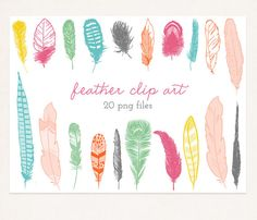 20 .png feather graphics/ digital clip art by michLgstudios