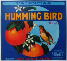 HUMMING BIRD Vintage Orange Crate Label