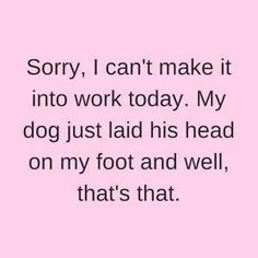 Doggy Dans Kind & Gentle Dog Training Method - Funny Dog Quotes - Pennsylvania Artist LouLou Clayton loves her dogs!loulouclayton The post Doggy Dans Kind & Gentle Dog Training Method appeared first on Gag Dad. I Love Dogs, Puppy Love, Cute Dogs, Big Dogs, Yorkies, Chihuahuas, Jiff Pom, Lol, Dog Rules