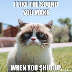 I like the sound you make when you shut up. tard the grumpy cat