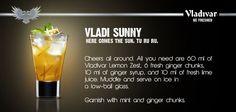 Vladi Sunny - Here comes the Shine!!