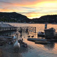 Dusk - Lake Como, Italy  Taken from Como harbor  (Photographer: @jengenzale on Instagram  July 2017
