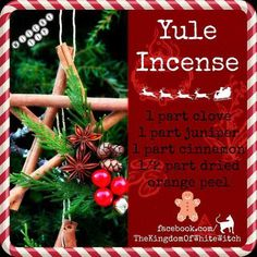 My favorite smells:Yule Incense`*. Christmas Time, Christmas Crafts, Xmas, Pagan Christmas, Christmas Stuff, Christmas Ideas, Yule Traditions, Yule Celebration, Pagan Yule