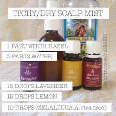 Perfect for itchy, dry scalp and dandruff. Add Young Living rosemary essential oil for added benefits. - Perfect for itchy, dry scalp and dandruff. Add Young Living rosemary essential oil for added benefits. Oils For Dandruff, Essential Oils For Psoriasis, Doterra Essential Oils, Yl Oils, Essential Oil Spray, Essential Oil Blends, Essential Oil Dry Scalp, Young Living Oils, Young Living Essential Oils