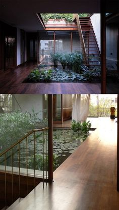 garden design architecture internal courtyard garden design, Small Water Garden Surrounded In Indoor Modern House: Designing minimalist fish pond design with ornament decor Indoor Pond, Indoor Courtyard, Indoor Water Garden, Internal Courtyard, Rooftop Garden, Indoor Gardening, Organic Gardening, Gardening Tips, Rooftop Deck