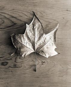 Currently browsing Creative Black and White Photos by Chema Madoz for your design inspiration
