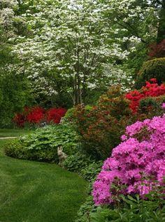 beautiful landscaping*