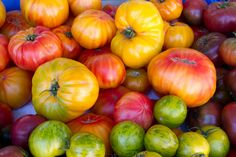 """""""Basically, an Heirloom seed is one that has been passed down through families and is usually considered to be over 50 years old. Some varieties even date back to Thomas Jefferson's garden and beyond."""""""