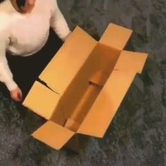 Daily Hacks - DIY Carton Box Water Garden - Pond Pumps To Pump Up The Volume The sounds of the water Amazing Life Hacks, Simple Life Hacks, Useful Life Hacks, Diy Crafts Hacks, Diy Crafts For Gifts, Diy Home Crafts, Daily Hacks, Diy Organisation, Home Hacks