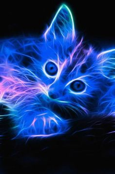 I always knew cats were electrified! so thats why I consider myself a cat, quiet very knowledgeable of its surroundings, and a quick attacker ... Just like me