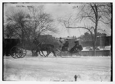 Gilded Age view of, Horse drawn sleigh in Central Park, NYC. (Bain News Service) Park In New York, New York City, Vintage Photographs, Vintage Photos, Central Park Nyc, Columbus Circle, Horse Drawn, New York Street, East Coast