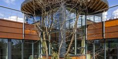 The new million Maggie's North East cancer care centre designed by Ted Cullinan has opened its doors Architecture Images, Amazing Architecture, Newcastle, Centre, Fair Grounds, Studio, House Styles, Building, Design