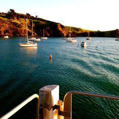 Ferry to Waiheke Island, New Zealand