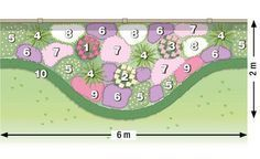 Zum Nachpflanzen: Rosen und Stauden gekonnt kombiniert The planting plan for our design idea Related posts: For replanting: roses and perennials skillfully combined Peonies, roses and vertical shapes! 10 tips for gorgeous Christmas roses Planting Plan, Planting Roses, Garden Trellis, Balcony Garden, Herbs Garden, Garden Paths, Rosen Beet, Potted Plants Patio, Landscaping Around Trees