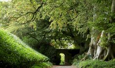 Altamont Gate [Altamont House & Garden], near Tullow Ireland.