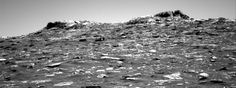 NASA's Mars rover Curiosity acquired this image using its Right Navigation Cameras (Navcams) on Sol 1753  </>  embed  This image was taken by Navcam: Right B (NAV_RIGHT_B) onboard NASA's Mars rover Curiosity on Sol 1753 (2017-07-12 09:11:54 UTC).    Image Credit: NASA/JPL-Caltech    Full Resolution  << Back to Sol 1753 raw images    << Back to Right Navigation Cameras (Navcams) images from Sol 1753  USA.gov  PRIVACY     FAQ     SITEMAP     FEEDBACK     IMAGE POLICY
