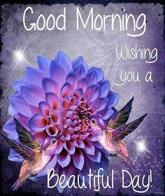 Good Morning Wishing You A Beautiful Day!!