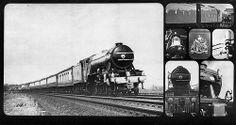 Flying Scotsman running with one tender Flying Scotsman, Steam Locomotive, Trains, Running, Keep Running, Why I Run, Train