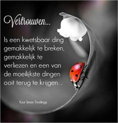 Quotes About Trust : QUOTATION - Image : Quotes Of the day - Description Vertrouwen . Sharing is Caring - Don't forget to share this quote Poetry Quotes, Words Quotes, Love Quotes, Sayings, Daily Quotes, Lifetime Quotes, Dutch Words, Spiritual Words, Trust Quotes