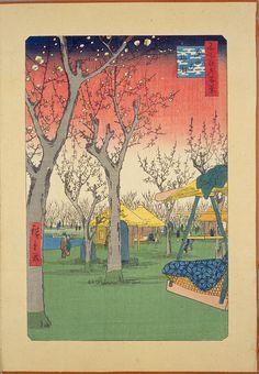 Plum Orchard in Kamada , peacay on flickr