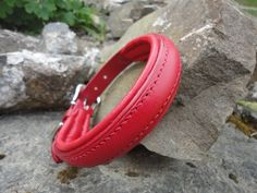 Red Rasied and Padded Collar