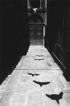 Amazing light & shadow, black & white photograph!