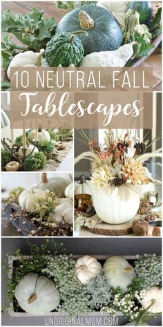 Beautiful and inspiring neutral fall tablescapes using lots of natural elements…
