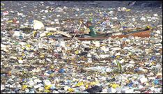 pacific ocean garbage patch - Bing Images