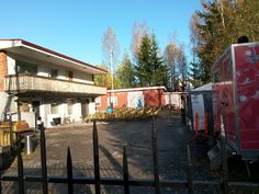 Koivikon Katveessa: Markkua tervehtimässä
