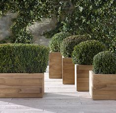 "Restoration Hardware   Small Planter: 22""W x 22""D x 18""H; 40 lbs. Medium Planter: 26""W x 26""D x 21½""H; 57 lbs. Large Planter: 30""W x 30""D x 25""H; 82 lbs. Extra-Large Planter: 34""W x 34""D x 29""H; 99 lbs. Trough: 40""W x 20""D x 18""H; 57 lbs."
