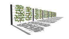 Sichtschutzkombinationen - Teil 6: Sichtschutz mit Spalierobst, Aluminiumpfosten und Edelstahlseilen - Moderner Sichtschutz im Garten