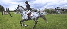 The Eloquent Equine – Digital Horse Magazine