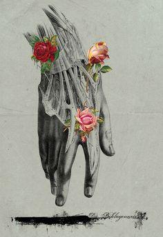 Quando todos os outros sentimentos secarem, a amizade deve permanecer, para tentar sustentar o que restou.