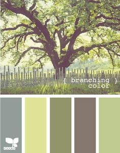 shades of green and complimentary nature colours and i love this big old tree. and i want this to be my yard :)
