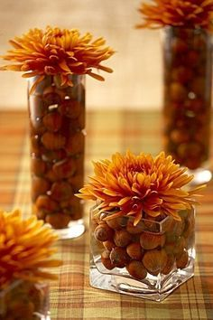 Thanksgiving Tablescapes nut filled vases topped with mums…keep it simple | best stuff Suggestion: instead of submerging the nuts in water, get floral tubes to keep your stem fresh.