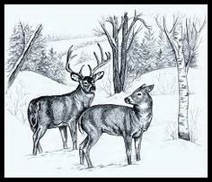 Image result for Free Wood-Burning Stencils
