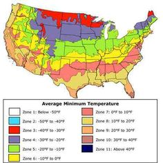 Zoysia Grass In The Carolinas Is It Right For You Zoysia Grass - Us map of approximate crabgrass seed germination dates