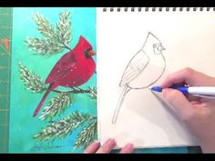 Learn how to draw a Cardinal in this free art lesson. Male and female cardinals sitting on pine branches can be quickly and easily drawn using this tutorial....