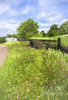 South Wales, Great Britain, Newport, Wild Flowers, Restoration, Digital Art, Instagram Images, Wall Art, Travel