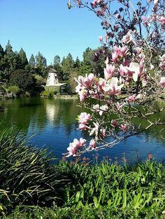 Self Realization Fellowship Lake Shrine Temple, Pacific Palisades, CA