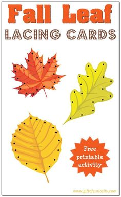 Free Fall Leaf Lacing Cards for kids to enjoy the colors of fall while developing their fine motor skills. | #freeprintable #fall #leaves #giftofcuriosity #finemotor || Gift of Curiosity Autumn Leaves Craft, Fall Leaves, Fall Preschool Activities, Preschool Programs, Thanksgiving Preschool, Motor Activities, Sensory Activities, Lacing Cards, Fall Crafts For Kids