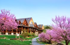 Falls Lodge in the Spring at Big Cedar Lodge.
