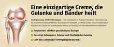 #Deutschland #Germany #Hamm  #Mülheim an der #Ruhr  #Ludwigshafen am #Rhein #Potsdam #Leverkusen #Oldenburg #Osnabrück #Solingen  #Herne #neuss #Heidelberg #Darmstadt #Paderborn #Regensburg #Ingolstadt #Würzburg   #Fürth #Ulm #Offenbach am Main #Heilbronn #Pforzheim #Göttingen #Bottrop   #Recklinghausen #Reutlingen #Koblenz #Bergisch #Gladbach#remscheid#Bremerhaven   #ena #Trier #Erlangen #Moers