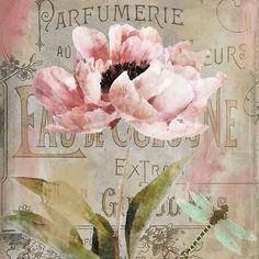 Jardin Rouge I