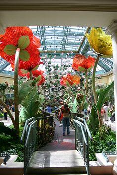 Botanical garden giant flowers