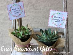 A quick and easy succulent gifts idea with FREE printable perfect for Mom's and Teacher's.