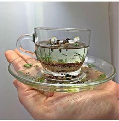 icu ~ 🔮🌙 inspo via Beth Freeman-Kane - Wildlife Miniaturist ✨ . ~ 🔮🌙 inspo via Beth Freeman-Kane - Wildlife Miniaturist ✨ . Cute Crafts, Diy And Crafts, Arts And Crafts, Resin Crafts, Resin Art, Miniature Crafts, Resin Jewelry, Dollhouse Miniatures, Tea Cups